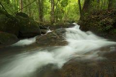 Vattenfall med vaggar i skog Arkivbilder