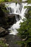 Vattenfall - min bytenedgångar - Catskill berg, New York Arkivbild