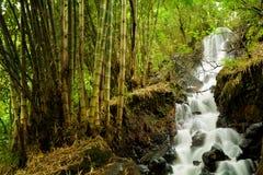 Vattenfall Mini Mojokerto Royaltyfria Bilder