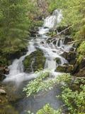 Vattenfall Myantyukoski, stenkaskad för tre moment i den Paanajärvi nationalparken Arkivbilder
