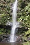 Vattenfall nära staden av Tarapoto, Peru royaltyfria foton