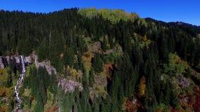 Vattenfall naturliga Forest River In Autumn lager videofilmer