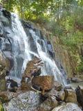 Vattenfall Neozhidanniy i skogen Royaltyfria Bilder