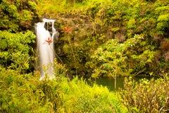 Vattenfall nordlig kust Maui, Hawaii Royaltyfria Foton