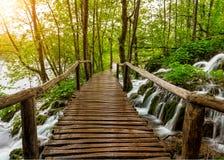 Vattenfall och bana i den Plitvice nationalparken, Kroatien Fotografering för Bildbyråer