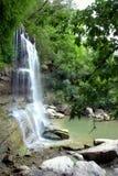 Vattenfall och damm i djungeln royaltyfri foto