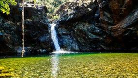 Vattenfall och damm i djungeln Arkivfoton