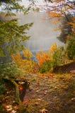 Vattenfall och flod i hösten, lodlinje Arkivbilder