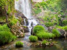 Vattenfall och flod i natur Arkivbilder