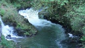 Vattenfall och flod som flödar snabbt arkivfilmer