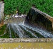 Vattenfall och gräs Arkivfoton