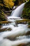 Vattenfall och kaskader på en ström i Holtwood, Pennsylvania royaltyfria foton