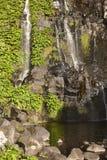 Vattenfall och pöl i den Flores ön, Azores Poco gör Bacalhau Royaltyfri Foto