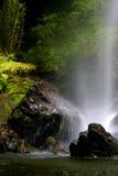 Vattenfall och skog Arkivfoton