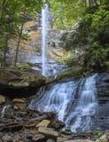 Vattenfall och skog i South Carolina Royaltyfria Bilder