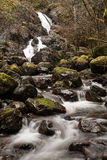 Vattenfall- och strömflöde över stenblock till och med kust- Rainforest Arkivfoton