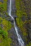 Vattenfall på ön av madeiran, Portugal Arkivfoton
