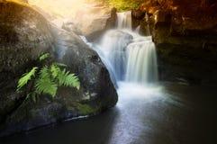 Vattenfall på bergfloden Arkivfoto