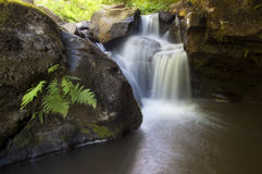 Vattenfall på bergfloden med klippor Arkivfoton