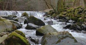Vattenfall på den lilla floden i vår lager videofilmer