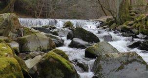 Vattenfall på den lilla floden i vår stock video