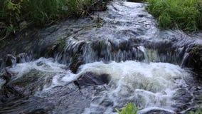 Vattenfall på den vita bakgrunden stock video
