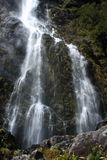 Vattenfall på det Routeburn spåret i den Fiordland nationalparken Arkivbilder