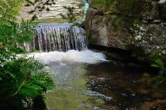 Vattenfall på en skogflod Arkivfoton