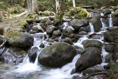 Vattenfall på floden Murudzhu bland Caucasian skog i höst Royaltyfria Bilder