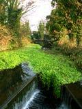 Vattenfall på Grand Junctionkanalen nära Uxbridge och Heathrow i London Fotografering för Bildbyråer