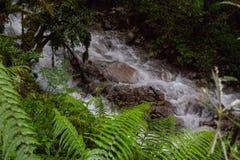 Vattenfall på Inca Trail på vägen till Machu Picchu, Peru arkivfoton