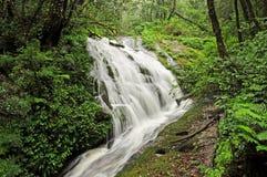 Vattenfall på Kew Mae Pan Royaltyfri Fotografi
