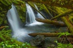 Vattenfall på Murhut liten vik i olympisk nationalskog i staten Washington Royaltyfri Bild