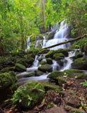 Vattenfall på nationalparken Royaltyfria Bilder