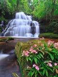 Vattenfall på nationalparken Arkivbilder