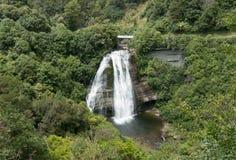Vattenfall på Te Urewera National Park arkivfoton