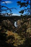 Vattenfall på Yellowstone Arkivfoton