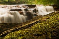 Vattenfall på Muddy Creek nära Albright WV Royaltyfria Bilder