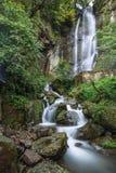 Vattenfall rinnande vatten, härligt landskap, ström royaltyfria bilder