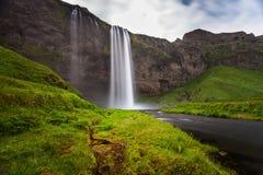 Vattenfall Seljalandsfoss Island Royaltyfri Fotografi