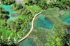 Vattenfall sjöar och trägångbana, på Plitvice sjöar Arkivbild