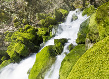 Vattenfall Skaklia, Bov by, Iskarsko klyfta Royaltyfri Fotografi