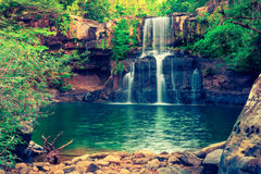 Vattenfall som döljas i den tropiska djungeln arkivfoto