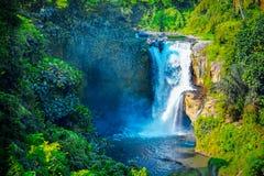 Vattenfall som döljas i den tropiska djungeln Majestätisk vattenfall i t Arkivbilder