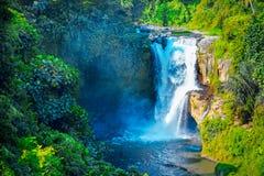 Vattenfall som döljas i den tropiska djungeln Majestätisk vattenfall i t Royaltyfri Bild