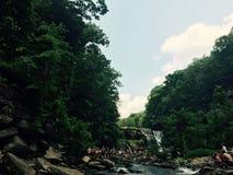 Vattenfall som döljas i skogen Royaltyfri Fotografi