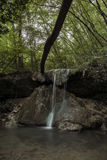 Vattenfall som fördjupas i gräsplanen av en skog Royaltyfria Foton