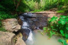 Vattenfall som flödar från skogen Arkivfoto