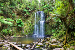 Vattenfall Tasmanien Arkivfoto
