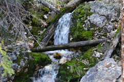 Vattenfall till och med mossa Royaltyfria Bilder